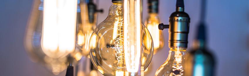 Multipack bulbs