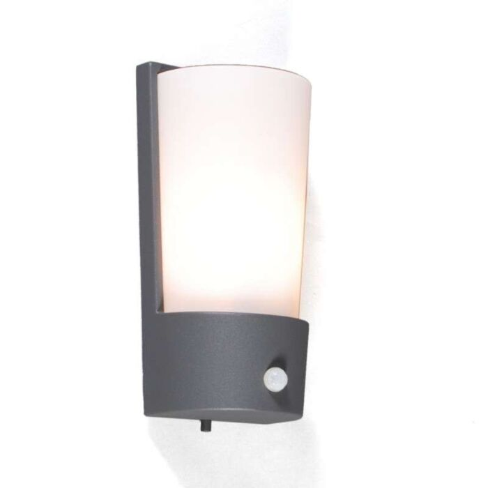 Outdoor-lamp-Laval-IR-graphite