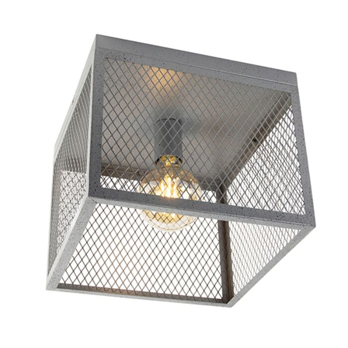 Industrial-ceiling-lamp-antique-silver---Cage-Robusto